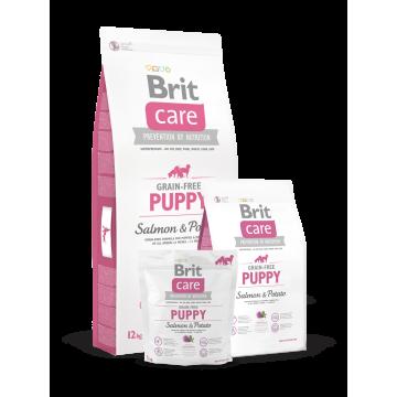 Сухой корм Brit Care Dog salmon Puppy беззерновой для щенков с лососем