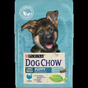 Сухой корм Dog Chow puppy large breed для щенков крупных пород, индейка...