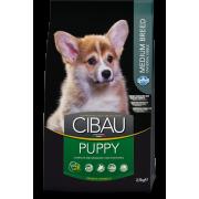Сухой корм Farmina Cibau Puppy Medium для щенков средних пород курица...