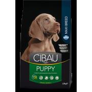 Сухой корм Farmina Cibau Puppy Maxi для щенков крупных пород курица и рыба...