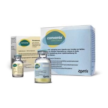 Zoetis Конвения антибактериальный препарат для кошек и собак, 5мл