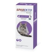 Бравекто Spot on для кошек 500 мг (6,25-12,5 кг)