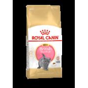 Сухой корм Royal Canin Kitten British shorthair для котят (британских) ...