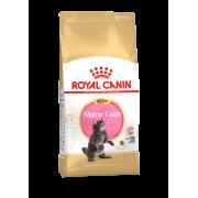 Сухой корм Royal Canin Kitten Maine coon для котят (для крупных пород) ...