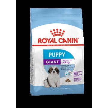 Сухой корм Royal Canin Giant Puppy для щенков гигантских пород 2-8 месяцев