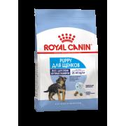 Сухой корм Royal Canin Maxi Puppy для щенков крупных пород от 2 до 15 месяцев ...