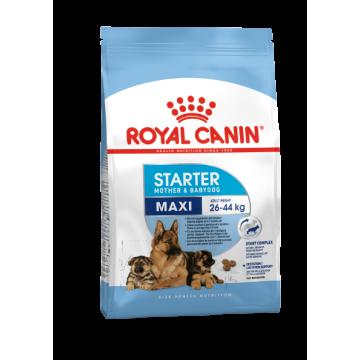 Сухой корм Royal Canin Maxi Starter для щенков крупных пород и сук в период лактации