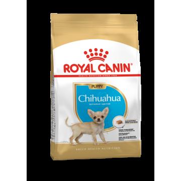 Сухой корм Royal Canin Chihuahua junior для щенков чихуахуа до 8 месяцев