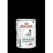 Консервы Royal Canin Diabetic Special Low Carbohydrate (в паштете) для собак при...